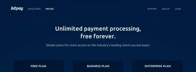 bitpay-free-processing