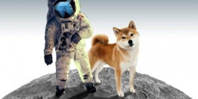dogespace