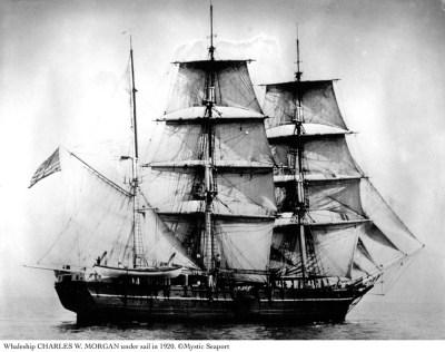"""""""Чарльз  Морган"""" –  это последний  из ныне существующих китобойных кораблей во всем мире. В последний раз он отправлялся в китовый рейд в 1921 году."""