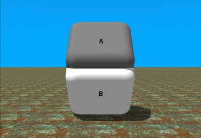 Gray-Box-Illusion1