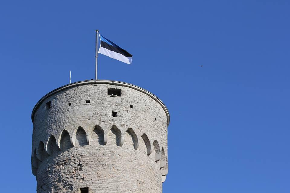 Эстония еврозона Estcoin