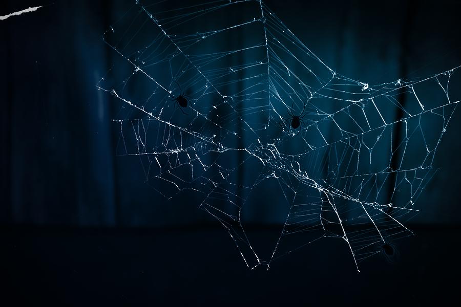 тёмный веб
